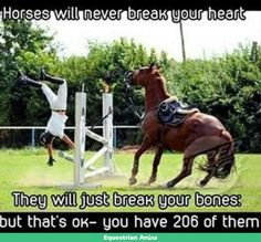 So true!!! People will always break your heart cause u have only 1 but will never break your bones . As always horses are the best