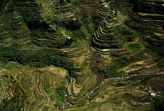 No trip to the Philippines could be complete without seeing the spectacular Banaue Rice Terraces. Carved from the mountain ranges about 2,000 years ago without modern tools by the Ifugao tribes, these magnificent farm terraces resemble giant steps reaching up to the sky. Locals to this day still plant rice and vegetables on the terraces, although more and more younger Ifugaos do not find farming appealing and emigrate to the cities.