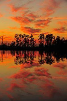 Sunset @ Blackwater NWR