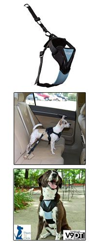 Dog Auto Safety Harness at The Animal Rescue Site - dogs can be injured in a car accident - either thrown from the car or runs away - this could save it's life