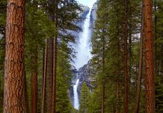 Reconnect with nature. Photo of Yosemite Falls by Peter Lik - California.Love how the waterfall is framed on either side by the forest trees Peter Lik Photography, Fine Art Photography, Landscape Photography, Wedding Photography, Yosemite National Park, National Parks, Beautiful Scenery, Beautiful Places, Yosemite California