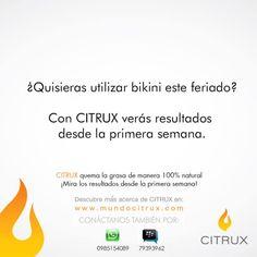 ¿Quisieras utilizar bikini este feriado?… Con #CITRUX verás los resultados desde la primera semana.  #CITRUX quema la grasa de manera 100% natural. ¡Mira los resultados desde la primera semana! Para pedidos por #Whatsapp +593 985154089 o por #BBM Pin: 79393962 #ecuador #pedidos #bajar #pesoideal #salud #distribuidor #flaco #gordo #adelgaza #feriado #feriadoabril #citrux
