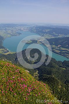 #View To #Lake #Mondsee From #Schafbergspitze 1.783 In The #Morning @dreamstime #dreamstime @Salzkammergut @iSalzkammergut #Salzkammergut #travel #summer #beach #holidays #vacation #austria #landsacpe #nature #outdoor #bluesky #hiking #view #beautiful #mountains #stock #photo #portfolio #download #hires #royaltyfree