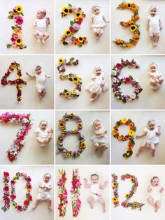 Project Nursery - Flower Number Monthly Baby Photos by Lauren Bowyer