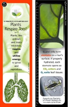 Education & Research - Bookmarks - American Society of Plant Biologists