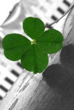 Happy Saint Patrick's Day: http://bit.ly/1Gs10QG