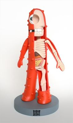"Jason Freeny...""his modified designer toys are often anatomical sculptures of popular icons in the toy world, which have been carefully sculpted to reveal their skeletal structure and other gooey innards"""