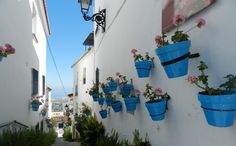 Pot Plants in Mijas Pueblo