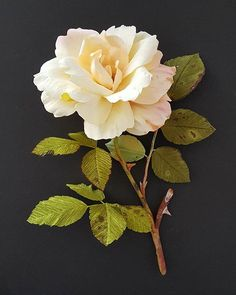 """""""Thank you. Here's a busted up rose."""" - Crepe paper diseased rose by Lynn Dolan"""