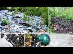 Un jardín libre de malas hierbas sin herbicidas ni productos tóxicos