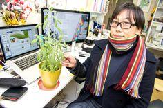 Mr.Aoki https://www.facebook.com/herbsdiary