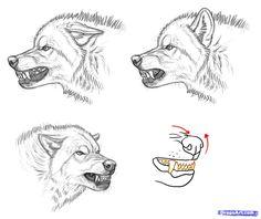 Imagini pentru planse de colorat lupi | Wolf colors, Wolf ...