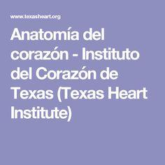 Anatomía del corazón - Instituto del Corazón de Texas (Texas Heart Institute)