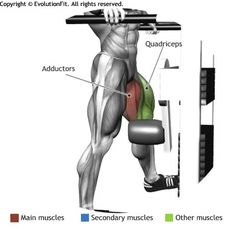Protein To Build Muscle Is Essential Men's Health Fitness, Fitness Diet, Fitness Motivation, Workout Guide, Workout Challenge, Cable Workout, Weight Training Workouts, Fitness Exercises, Exercise Physiology