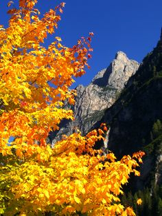 Pragser Wildsee, South Tyrol, Italy