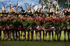 Papua New Guinea Tribes | Papua New Guinea - Hulis wigmen | endangered HUMANS tribes and clans