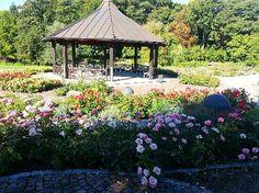 Botanischer Garten - Japan Garten - Augsburg, Germany