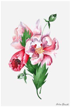 Flowers - by Cristina Caramida