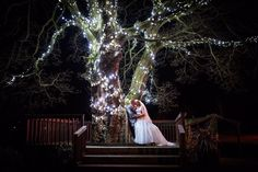 Home - Stirk House Light Up Tree, Wedding Venues, Wedding Photos, Wedding Inspiration, Wedding Dresses, House, Wedding Reception Venues, Marriage Pictures, Bride Dresses
