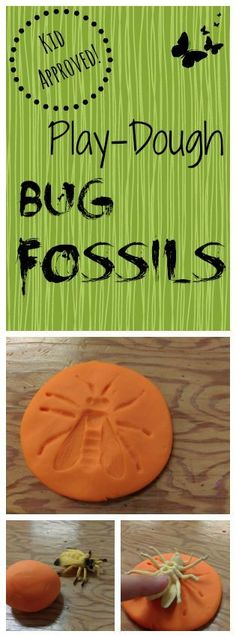 (Kid-Approved!) Play-Dough Bug Fossils, Great Activity For A Dinosaur Party!