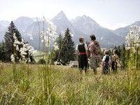 Z-Ticket Tiroler Zugspitz Arena - Ehrwald, Lermoos, Berwang, Biberwier, Bichlbach, Heiterwang, Namlos, Lähn-Wengle #RomantikHotelSpielmann Ticket, Places To Go, Mountains, Nature, Travel, Ursula, Blog, Snowshoe, Zugspitze