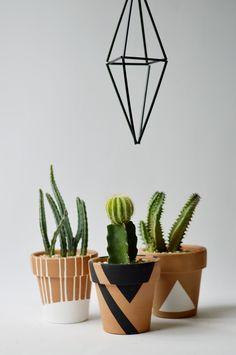 wabisabiatelie_terracotaM_pinturavariada1 Cactus Cactus, Terracotta Pots, Clay Pots, Terra Cotta, Easy Projects, Evergreen, Diy Home Decor, Planter Pots, Earth