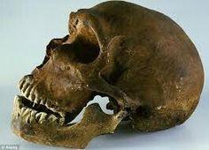 Perfil del cráneo neanderthalensis.