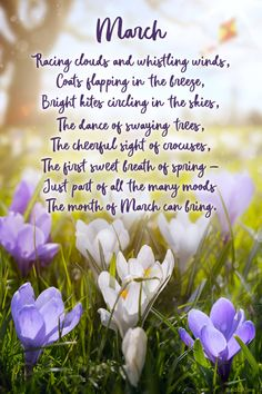 Jennifer and Brandon's birthdays.what sweet memories of their childhood. Month Of March Quotes, March Month, Hello March Quotes, Seasons Of The Year, Months In A Year, 12 Months, Bible Verses Quotes, Poetry Quotes, Spring Poem