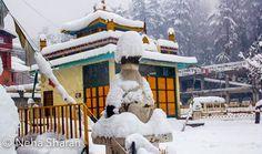 Fresh snowfallin Manali town