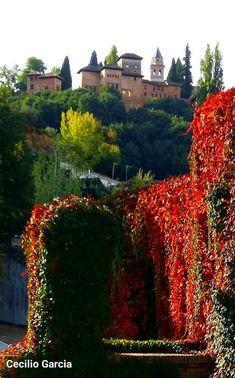 Granada, River, Mansions, House Styles, Outdoor, Decor, Urban Sketching, Sevilla, Scenery