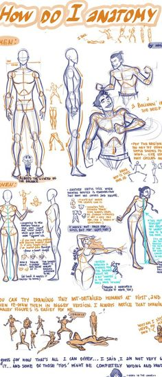 An excellent figure drawing tutorial - human anatomy - how to draw a man - human figure - drawing reference Figure Drawing Tutorial, Figure Drawing Reference, Art Reference Poses, Design Reference, Anatomy Reference, Male Figure Drawing, Hand Reference, Drawing Lessons, Drawing Techniques