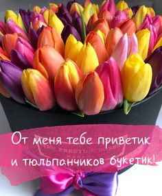 Corporate Flowers, New Pins, Coffee Time, Happy Day, Good Morning, Congratulations, Cool Photos, Flora, Funny Pictures