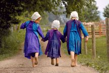 """If you are under the impression the Amish don't have a sense of humor, well, """"have another think."""" Here's a favorite: """"'One must remember where it comes from,' said the farmer when the mule kicked him.""""  #notquiteamish   @NotQuite Amish"""