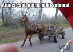Autonomes Fahren in Rumänien. Humor Mexicano, Car Jokes, Funny Jokes, Man Humor, Girl Humor, Funny Share, Bmw Autos, Marriage Humor, Epic Fail Pictures