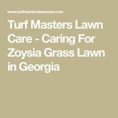 Turf Masters Lawn Care - Caring For Zoysia Grass Lawn in Georgia