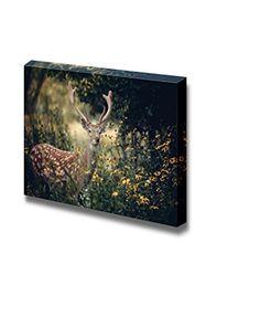 Canvas Prints Wall Art - Whitetail Deer Standing in Autum... https://www.amazon.com/dp/B00UYSB4GW/ref=cm_sw_r_pi_dp_x_MNufzb89NA6K7