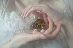 butterfly in the hands Angel Aesthetic, White Aesthetic, Aesthetic Art, Aesthetic Pictures, Bild Girls, Papillon Butterfly, L Wallpaper, Princess Aesthetic, Renaissance Art