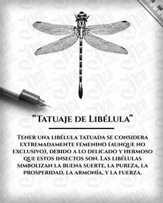 New music tattoo ideas design tatoo Ideas Symbol Tattoos, Music Tattoos, Love Tattoos, Beautiful Tattoos, Body Art Tattoos, Tattoos For Women, Tattoo Com Significado, Look 2015, Dragonfly Tattoo