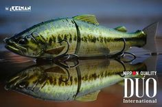 Duo brings a sweet new glide bait to the market, and the finishes are amazing.