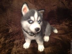 WOW - Amazing life like needle felted Husky puppy by Russian artist Alice Kruglov.