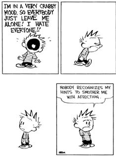 Calvin and Hobbes - Nobody recognizes my hints to smother me with affection.