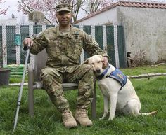Therapy dog helping one of our veterans.  God bless you both!