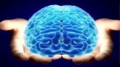 ¿El Coeficiente de inteligencia ha disminuido en las Últimos Años?