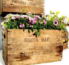Vintage Wooden Crate Rustic Wood Box Garden by OceansideCastle