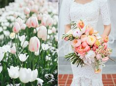 Kim & Cole | Springtime Wedding at Loggia Gardens | Snippet & Ink blog | Anne Barge gown | Tulips