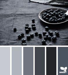 Wall Color Palette Grey Design Seeds New Ideas Colour Pallette, Colour Schemes, Color Combos, Black Color Palette, Dark Grey Color, Charcoal Colour, Charcoal Paint, Color Palate, Design Seeds