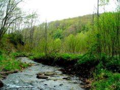 Large parcel near Todd NC, road frontage, the road frontage is level and then rolls up to the ridge line. Property has some timber and a nice creek. Great long range views from the top of the...