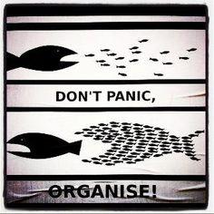 don't panic, organize! @Dana Cervenka