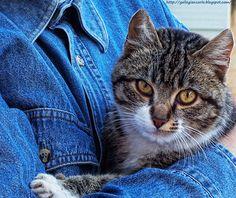 """Un abbraccio nel blu - foto concorso """"Blu"""" di iFocus - Questa è la fotografia con la quale ho partecipato al Concorso """"Blu"""" di iFocus"""