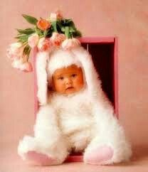 Coelhis e bebes combinam muito!